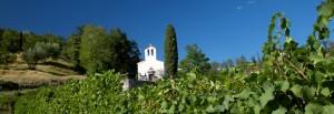 Corno di Rosazzo: chiesa tra i vigneti (ph Luigi Vitale)